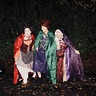 Photo #6 - The famous Sanderson shuffle