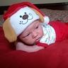 Photo #1 - Santa Puppy