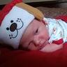 Photo #3 - Santa Puppy