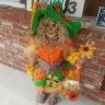 Photo #1 - Scarecrow