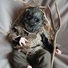 Photo #1 - Scary Scarecrow