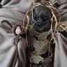 Photo #2 - Scary Scarecrow
