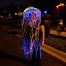 Photo #5 - glowing jellyfish