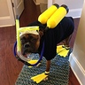 Photo #1 - Roger loves his scuba gear