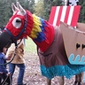 Photo #3 - My horse, Inky, the macaw/pirate boat