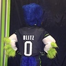 Photo #2 - Seattle Seahawks Mascot Blitz