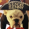Photo #3 - Senor Benny the Mariachi