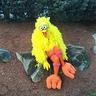 Photo #4 - Sesame Street