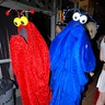 Photo #1 - Yips Yips like to party!