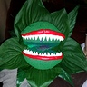 Photo #5 - Seymour and Audrey II