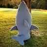 Photo #2 - Shark