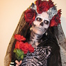 Photo #1 - Skeletina