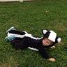 Photo #3 - Skunk