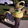 Photo #3 - Slinky Dog