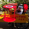 Photo #5 - Hunter  as Snoopy the flying Ace