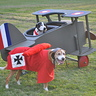 Photo #1 - Snoopy vs. The Red Baron