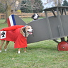 Photo #2 - Snoopy vs. The Red Baron