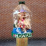 Photo #1 - Miss Hawaiian snowglobe - the early afternoon glare wasn't too helpful for detail