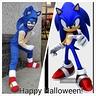 Photo #2 - Sonic
