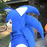 Photo #4 - Close view of Sonic