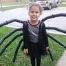Photo #1 - Spider