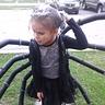 Photo #2 - Spider