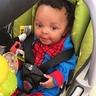 Photo #2 - Spider baby