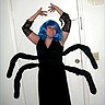Photo #1 - Creepy Crawly Spider
