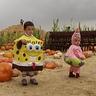 Photo #7 - Sponge Bob and Patrick