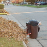 Photo #4 - Spooky Trash
