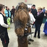 Photo #2 - Chewbacca