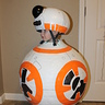 Photo #4 - BB8 side view