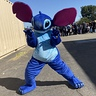 Photo #1 - Stitch