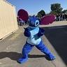 Photo #2 - Stitch