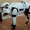 Photo #2 - Penny Bark-Bark as Stormtrooper Dog
