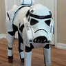 Photo #1 - Penny Bark-Bark as Stormtrooper Dog