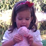 Photo #3 - strawberry alayna loving on custard!