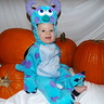Photo #1 - Sully from Monsters Inc.