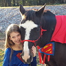 Photo #2 - Super Horse