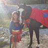 Photo #3 - Super Horse