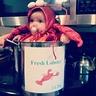 Photo #1 - Sweet Little Lobster