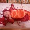 Photo #3 - Sweet Little Lobster