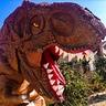 Photo #3 - T-Rex