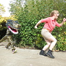 Photo #1 - A T-Rex chsaing Ellie