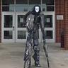 Photo #1 - Tall Stalker