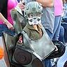 Photo #2 - Transformer costume tank