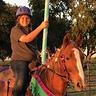 Photo #1 - Teddy the Carousel Horse