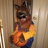 Photo #1 - Teen Wolf Sunglasses