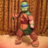 Photo #1 - Teenage Mutant Ninja Turtles (TMNT)