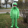 Photo #4 - Kermit the Frog
